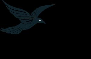 Born in Flight logo